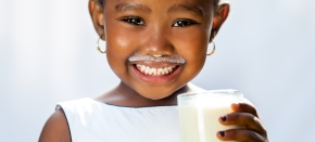 African Dairy Genetic Gains